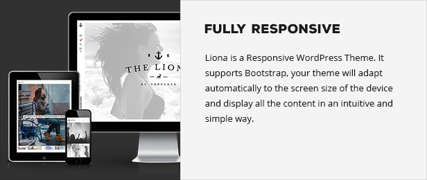 LIONA | A Portfolio Theme for Creative Site - 5