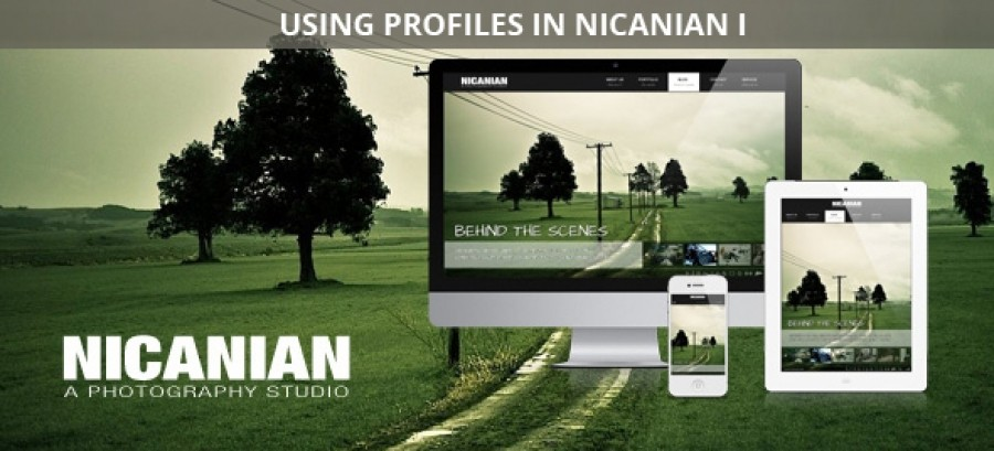 Using Profiles in Nicanian I
