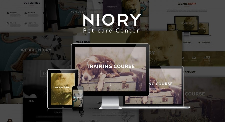 Special Discounting 30% For Niory Joomla Template