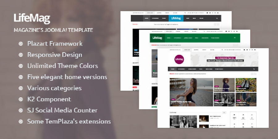 LifeMag Template – A Brief Introduction