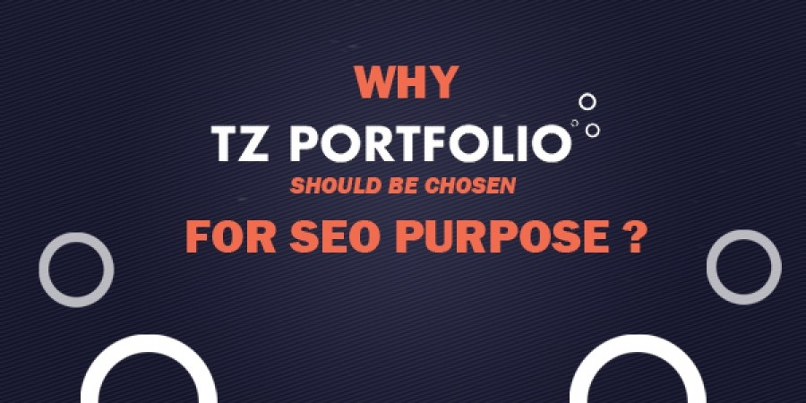 Why TZ Portfolio should be chosen for SEO purpose?