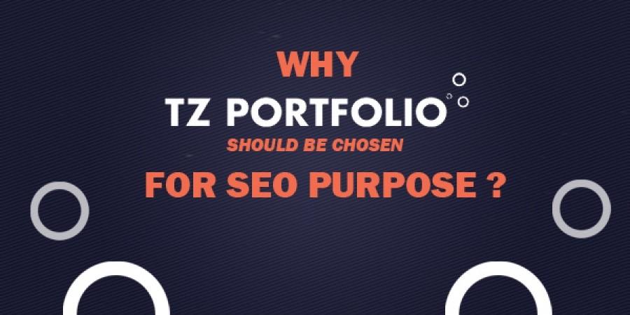 Why TZ Portfolio should be chosen for SEO purpose?