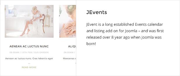 Everline - Wedding Joomla Template - 8