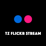 TZ Flickr Stream